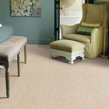 Caress Carpet by Shaw | Winona, MN