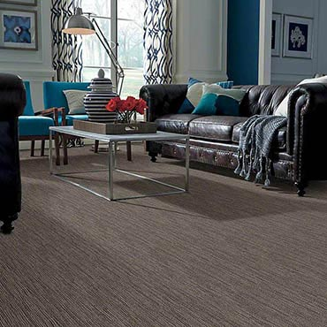 Anso® Nylon Carpet in Winona, MN